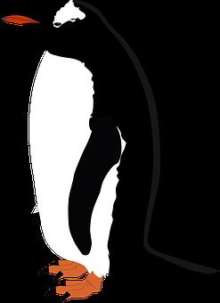 Gentoo Penguin, Penguin, Gentoo, Bird, Antarctica