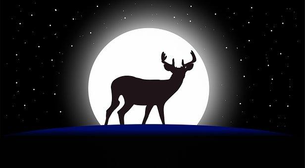Deer, Design, Wild, Moon, Moonlight, Reindeer, Stars