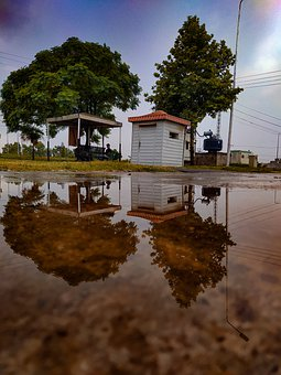 Street, Trees, Stall, Road, Puddle, Water, Rain