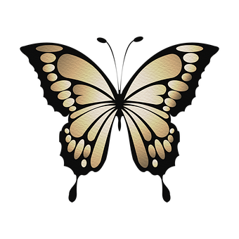 Butterfly, Swallowtail Butterfly, Insect