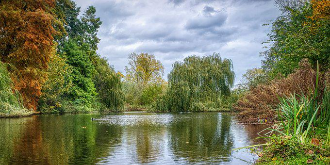 Lake, River, Park, Water, Trees, Foliage, Waterscape