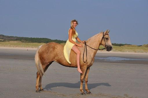 Horse, Quarter Horse, Beach, Bareback, Western, Riding