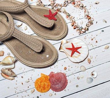 Sandals, Seashells, Sea, Vacation, Sand, Beach, Summer