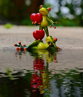 Frogs, Pair, Love, Water, Bank, Reflection