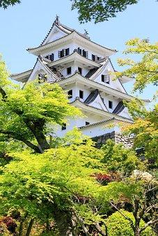 Gujo-hachiman, Castle, Gifu, Fresh Green, Japan
