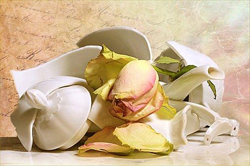 Still Life, Jug Broken, Withered Rose, Pink White