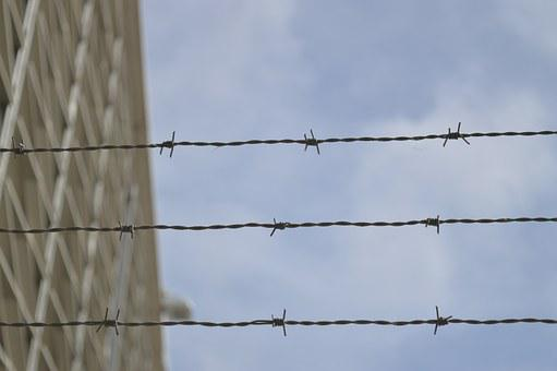 Barbed Wire, Prison, Metal, Barrier, Mesh, Steel, Cage