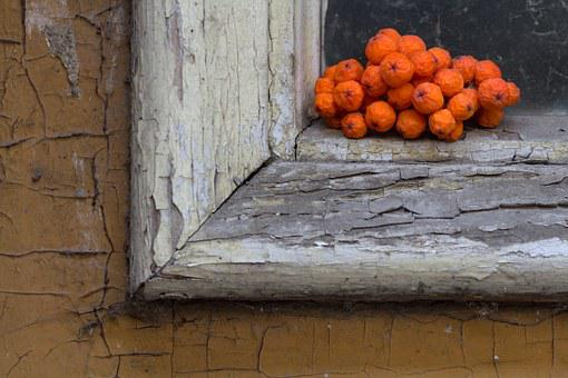 Still Life, Front Door, Wood, Old, Window, Mountain Ash