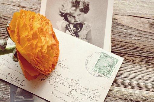 Ranunculus, Orange, Blossom, Bloom, Petals, Postcard
