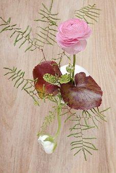 Ranunculus, Pink, White, Bouquet, Flowers, Pink Flower