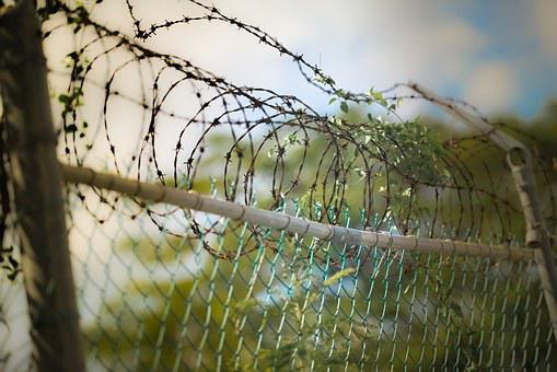 Barbed Wire, Fence, Barbwire, Security, Prison