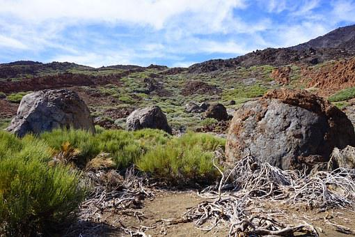 Lava, Rock, Basalt, Trail, Path, Teide