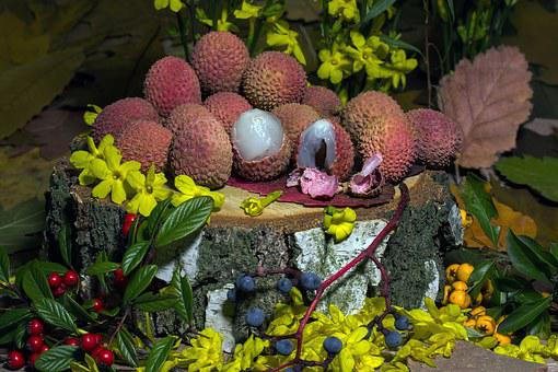 Fruits, Lychee, Berries, Flowers, Still Life