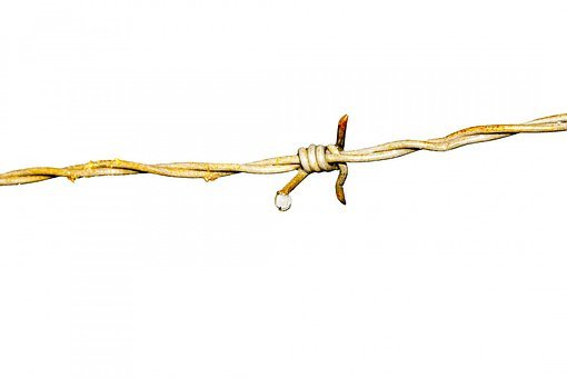 Barbed Wire, Iron, Skewer, Rust, Wire, Fence, Security