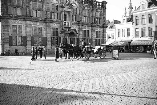 Horse, Coach, Buildings, Market Place, Town Hall, Delft