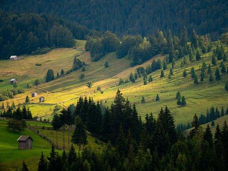 Landscape, Valley, Countryside, Hills, Field, Meadow