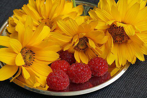 Yellow Flowers, Raspberries, Food, Red Fruit, Fruit