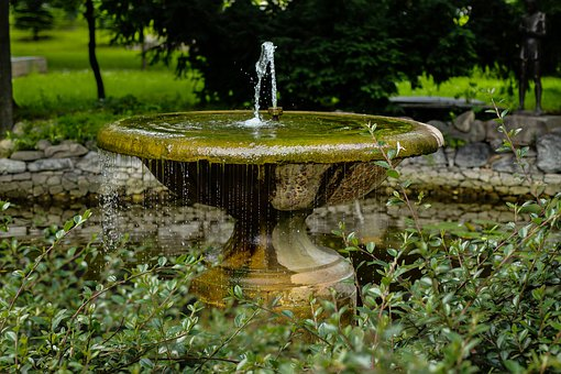 Fountain, Water, Park, Fish, Decoration, Green, Grass