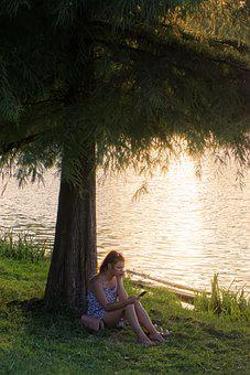 Woman, Lake, Tree, Leaves, Grass, Sunset, Girl, Person