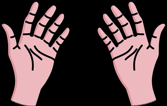 Body, Forelimb, Gesture, Hand, Hands, Human
