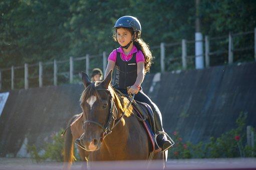 Horse, Horseback Riding, Equestrianism, Horsewoman