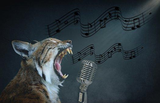 Lynx, Feline, Sing, Microphone, Music, Animal
