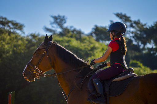 Girl, Horse, Equine, Mane, Equestrian, Equestrianism