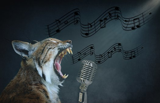 Composing, Lynx, Cat, Sing, Microphone, Music, Animal