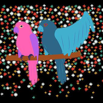 Parrot, Parakeet, Couple, Branch, Colorful, Animals