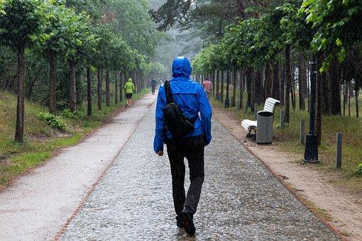 Walking, Raining, Walking Under The Rain, Path, Trail