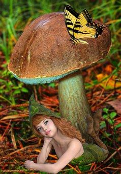 Fantasy, Elf, Mushroom, Butterfly, Toadstool