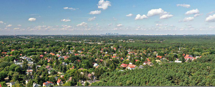 Forest, Trees, Houses, Town, Roofs, View, Aerial