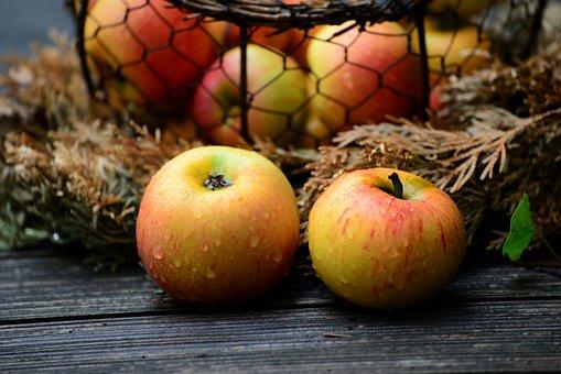 Apples, Fruit, Food, Healthy, Fresh, Ripe, Harvest, Wet