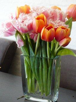 Tulips, Flower Vase, Vase, Flowers, Curly Tulips