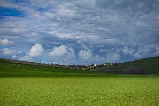 Landscape, Countryside, Field, Pasture, Grassland
