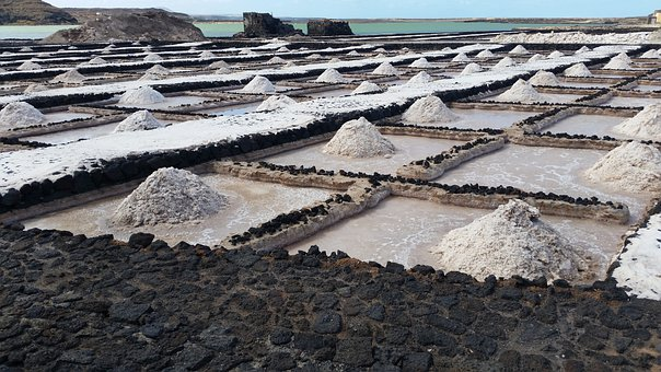 Salt Farming, Salt Plantation, Salt Farm