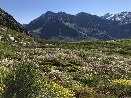 Towards The Rodond, Alpine Route, Alps, Alpine