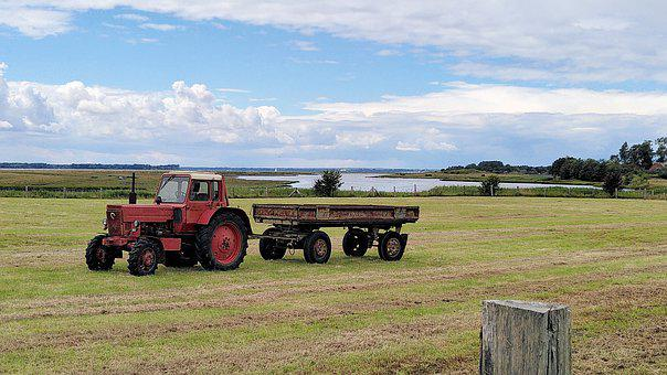 Tractor, Vehicle, Machinery, Field, Agriculture, Meadow