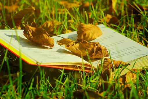 Book, Pages, Leaves, Foliage, Grass, Text, Reading