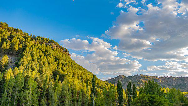 Landscape, Mountains, Trees, Foliage, Greenery