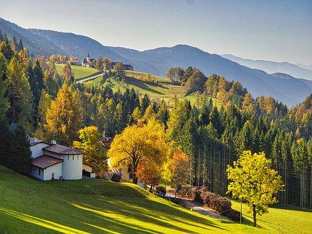 Mountain, Forest, Trees, Leaves, Dolomites, Horizon
