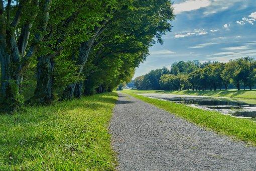 Trail, Path, Road, Trees, Farm, Rural, Row Of Trees