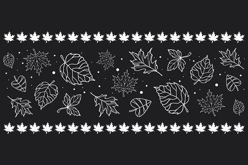 Leaves, Maple Leaves, Autumn, Foliage, Plants