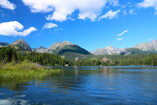 Lake, Trees, Mountains, Forest, Outdoors, Wildlife