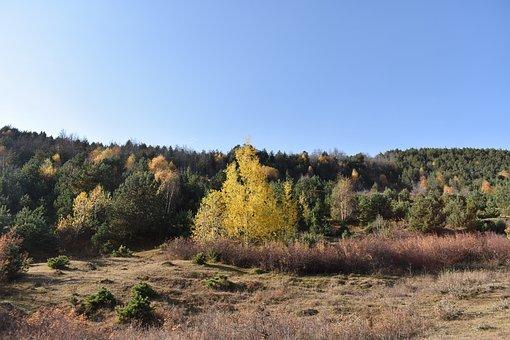 Landscape, Mountains, Nature, Mountain Range, Field