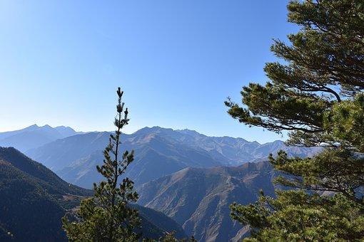 Landscape, Mountains, Nature, Mountain Range, Trees