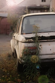 Car, Vehicle, Abandoned, Bmw, Automotive, Automobile