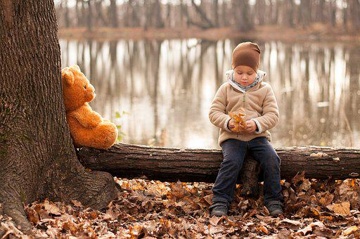 Boy, Child, Bear, Teddy Bear, Park, Trees, Leaves
