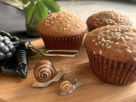 Cupcake, Yazdicake, Cookies, Persian Cookies, Food