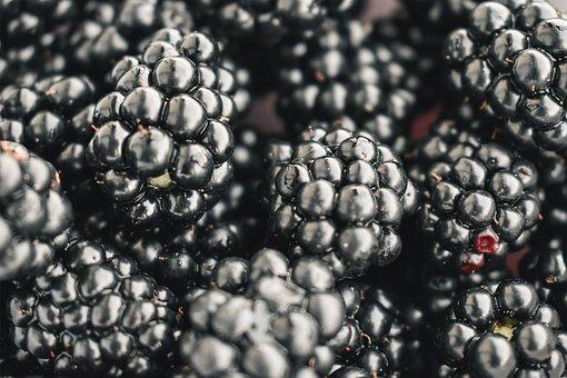 Blackberries, Fruit, Fresh, Food, Healthy, Vitamin